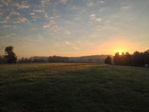 meadow-sunrise